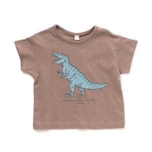 tシャツ Tシャツ バラエティきょうりゅうTシャツ