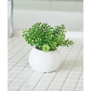 インテリア 〈ミニ観葉植物・フェイクグリーン〉ラウンドポットの画像