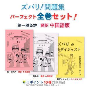 一種免許 全巻セット 翻訳 中国語版