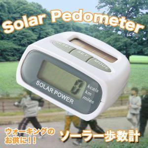 ソーラー歩数計 歩数・距離・消費カロリーも計測可能|zumi