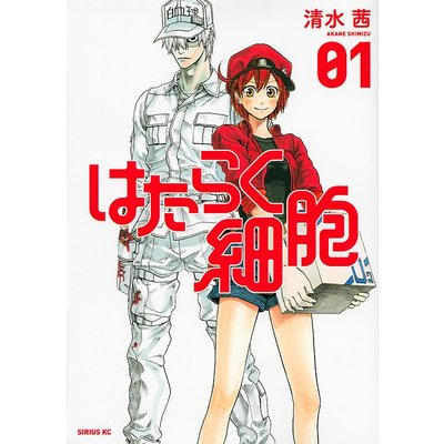 マニア系コミック、アニメ本その他