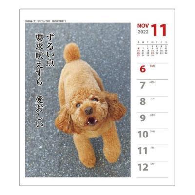 プードル 犬川柳 週めくり 書き込み カレンダー 2022 壁掛け 卓上 スケジュール いぬ ドッグ 令和4年 暦