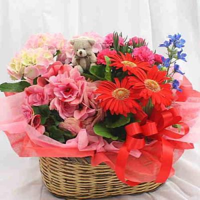 お誕生日記念日、開店開業のお祝い花ギフトプレゼント