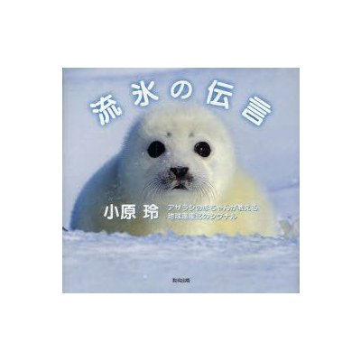 環境問題の本