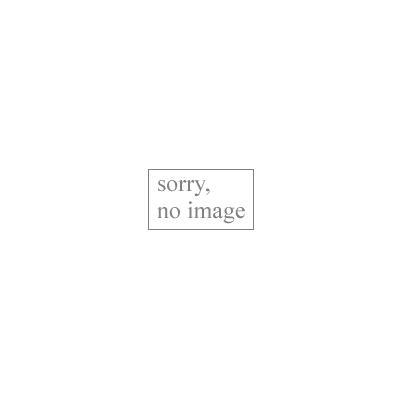 ジオマトリックス・デザイナーズ・インク 381系 長野・神領 フィルムシール J8303Aの商品画像