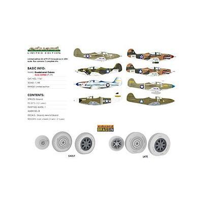 リミテッド・エディション ガダルカナル・コブラ (2機セット) (1/48スケール リミテッドエディション(エデュアルド) EDU1161)の商品画像