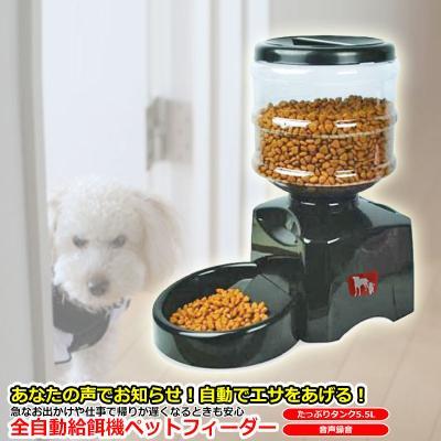犬用給餌器、自動給餌器