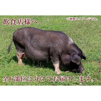 その他豚肉
