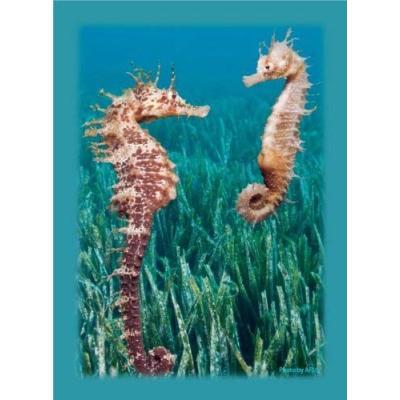 ブロッコリーハイブリッドスリーブ 「直立する竜たち」の商品画像