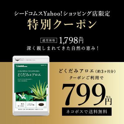 サボテン、多肉植物