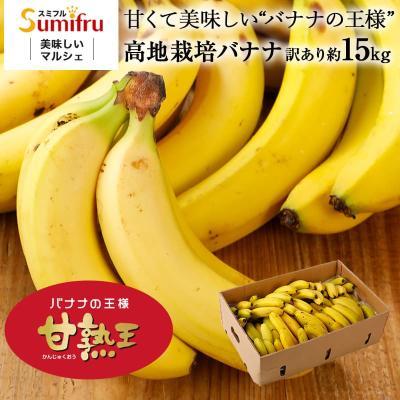 フルーツ バナナ