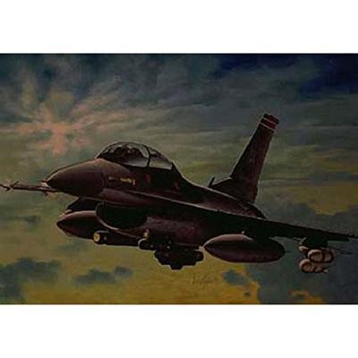 F-16C/D ナイトファルコン (1/72スケール 航空機モデル0188 39188)の商品画像