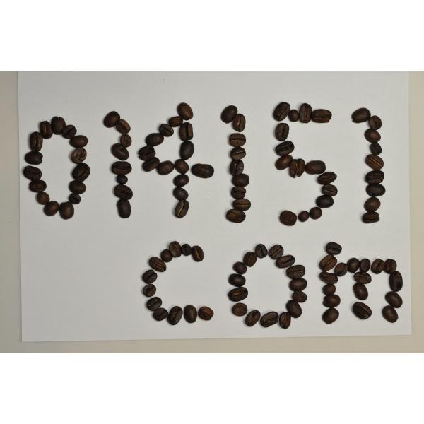 コーヒー豆 コーヒー ポイント消化 お試し 3種類 30杯分 珈琲豆セット 送料無料 珈琲 レギュラーコーヒー|014151