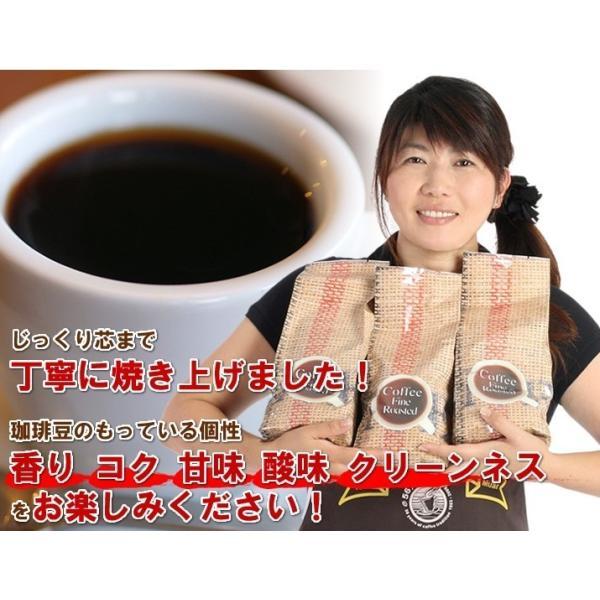 コーヒー豆 コーヒー ポイント消化 お試し 3種類 30杯分 珈琲豆セット 送料無料 珈琲 レギュラーコーヒー|014151|05