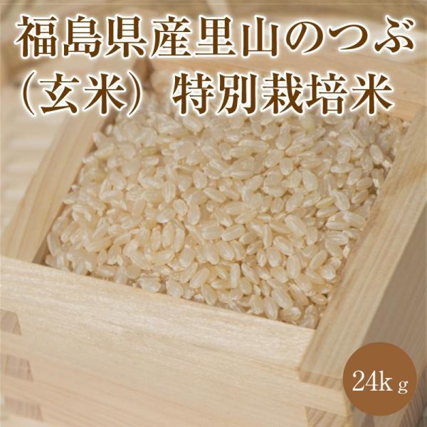 福島県産里山のつぶ(玄米)特別栽培米|0247782193