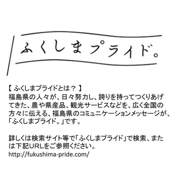 黒毛和牛 サーロイン ステーキ 極厚 5枚 A5 A4 国産 銘柄 福島牛 送料無料|029yasan|11