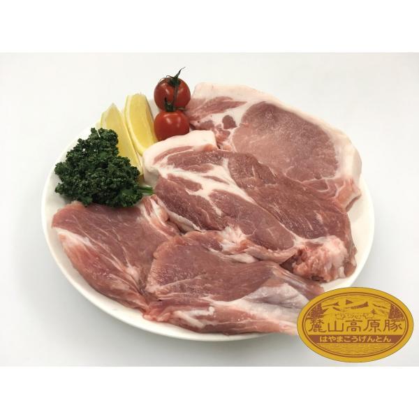 ブランド豚 麓山高原豚 国産 豚 とんかつ セット 3~4人前 (1.2kg) 肩ロース ロース ヒレ|029yasan