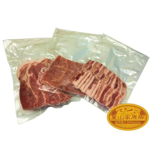 ブランド豚 焼肉 BBQ セット 【 麓山高原豚 】 焼肉 Aセット 8~10人前 (3.0kg)|029yasan|06
