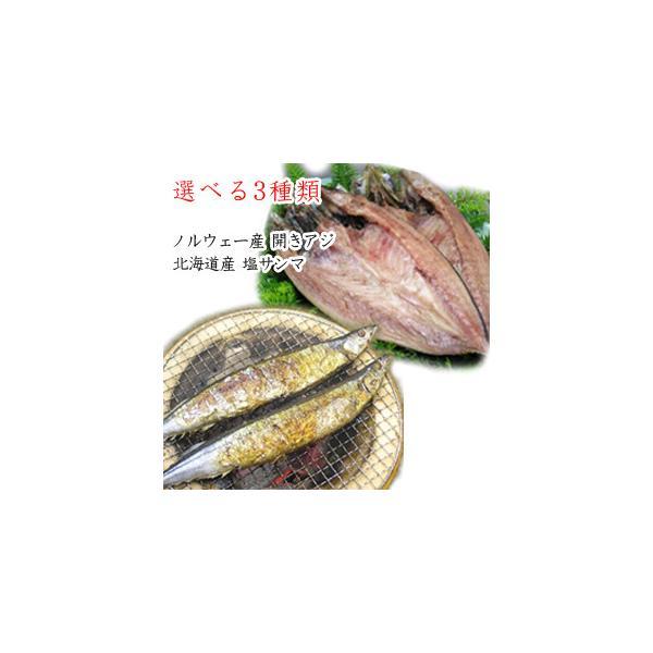 開きアジ 塩鯖フィレ 塩サンマ よりどり3種類セット 北海道産 ノルウェー産 /要冷凍/クール便/食品:林商店