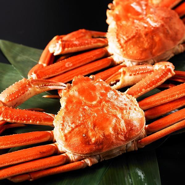 かに ズワイガニ カニ 蟹 ギフト 贈答用 姿2尾セット 約1kg 姿タイプのずわいがに ニッスイ お取り寄せギフト 1001000 02