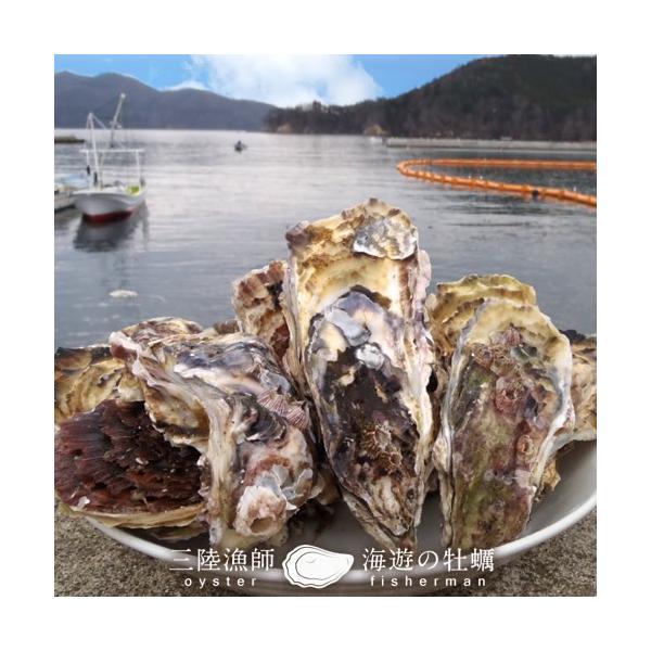 牡蠣ポン(2個入)×5袋セット 殻付き 生がき 簡単レンジでポン 宮城県産 漁師直送 かきぽん 送料込み|1123|02