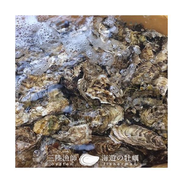 牡蠣ポン(2個入)×5袋セット 殻付き 生がき 簡単レンジでポン 宮城県産 漁師直送 かきぽん 送料込み|1123|03