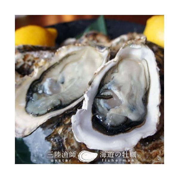 牡蠣ポン(2個入)×5袋セット 殻付き 生がき 簡単レンジでポン 宮城県産 漁師直送 かきぽん 送料込み|1123|04