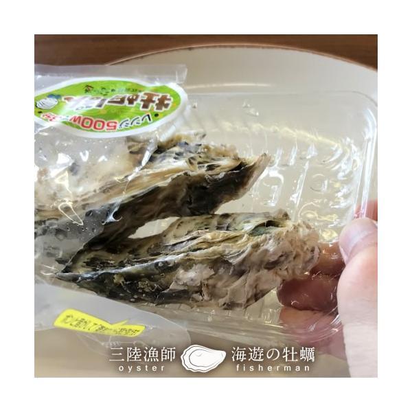 牡蠣ポン(2個入)×5袋セット 殻付き 生がき 簡単レンジでポン 宮城県産 漁師直送 かきぽん 送料込み|1123|06