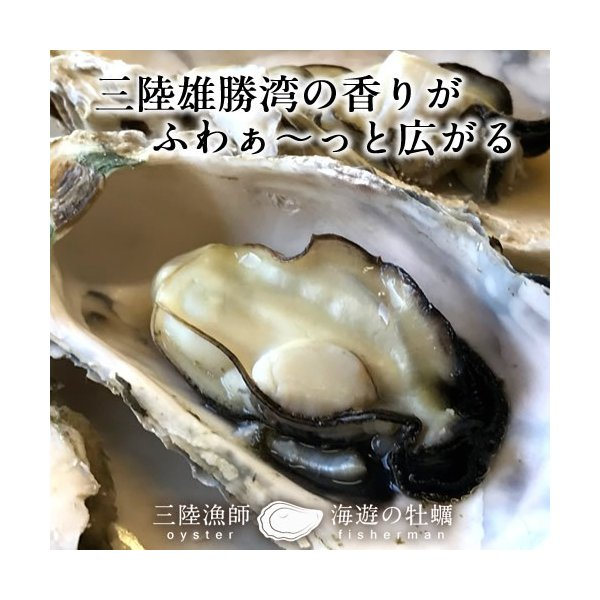 牡蠣ポン(2個入)×5袋セット 殻付き 生がき 簡単レンジでポン 宮城県産 漁師直送 かきぽん 送料込み|1123|07