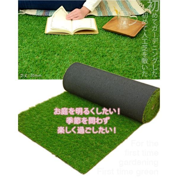 人工芝 ロール 芝生 1m×10m 芝丈20mm 単品 パークシアライト|1128|02
