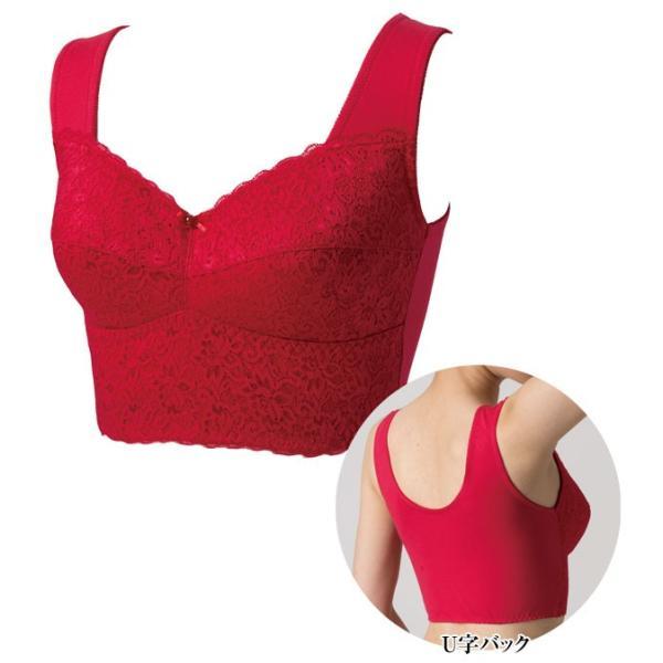 ドンナベルタ 幸せの赤い宝石ブラ 2枚組 綿混タイプ 着け心地快適ブラジャー DN0272|1147kodawaru|03