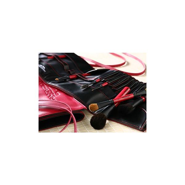 スターオブザカラー メイクブラシセット  9本セット(ブラシケース付き)|1147kodawaru
