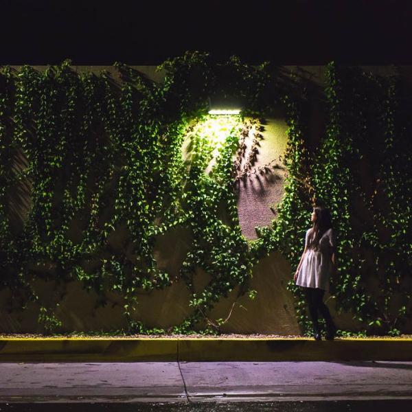 ソーラーライト センサーライト 高輝度 人感センサー搭載 ソーラー充電式ライト 屋外/玄関/芝生/車道/ガーデン/庭などに照明用 防水防犯 60LED|11oclock|13