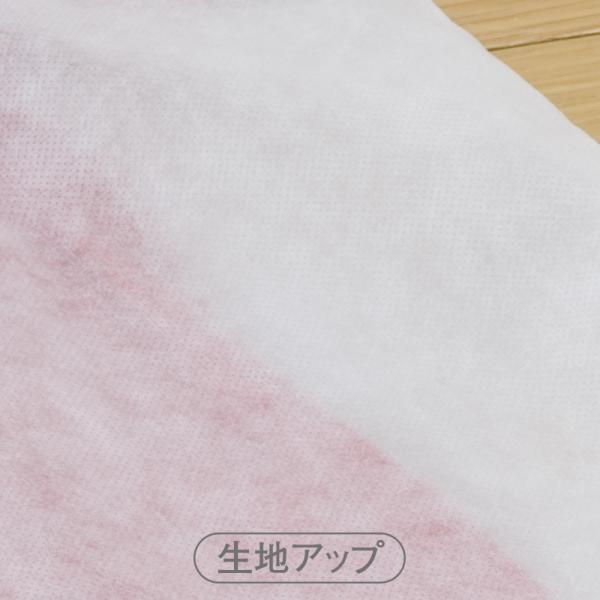 アストロ 洋服カバー スーツ用 5枚組 通気性のよい衣類カバー 湿気・ホコリ対策 110-60 1storage 04