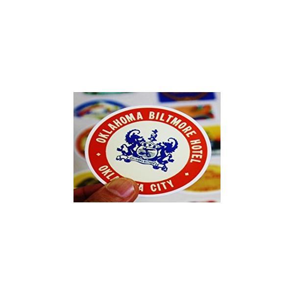 ラベル ステッカー ヴィンテージ 防水加工 大人気 スーツケース 空港 国旗 エアライン スケボー スノボー 55枚|24universe|05