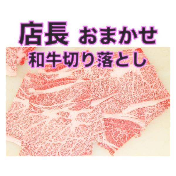 値下げ! 店長おまかせ 北海道産和牛切り落とし 500g |2983