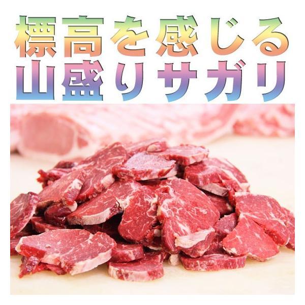 アメリカンビーフ サガリ 500g (BBQ バーベキュー) 2983 05