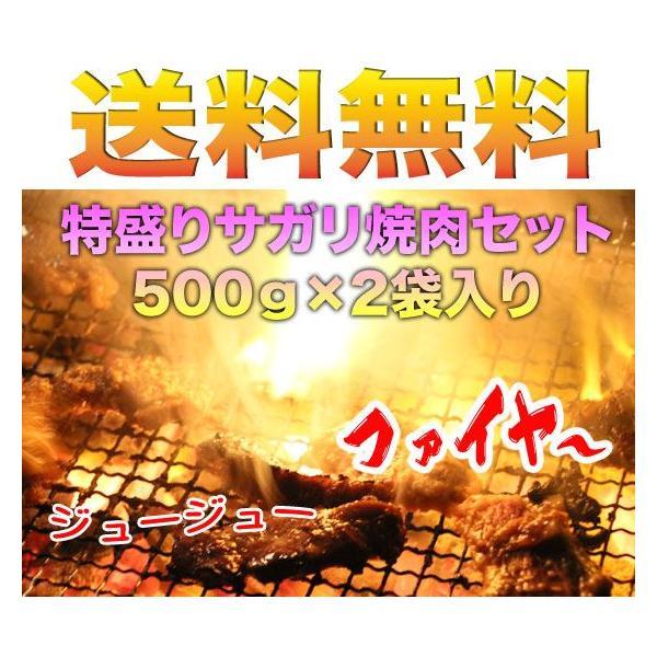 送料無料 お得な牛サガリ500g×2袋  (BBQ バーベキュー)セット|2983