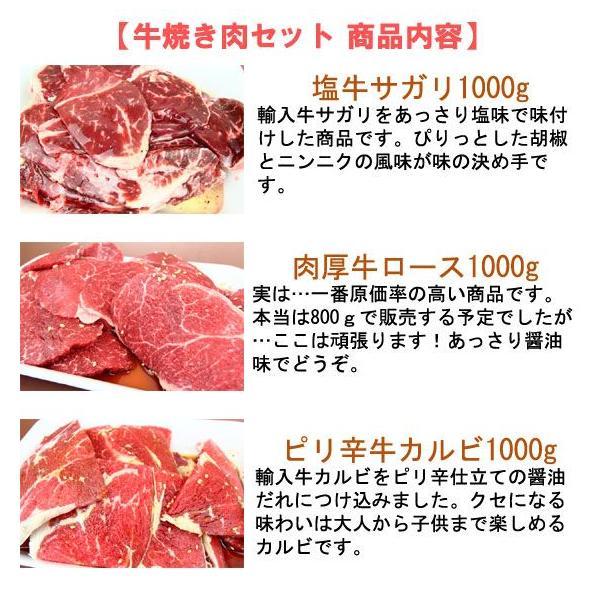 (バーベキュー BBQ) セット もっさり牛焼き肉セット 3kg  2983 05