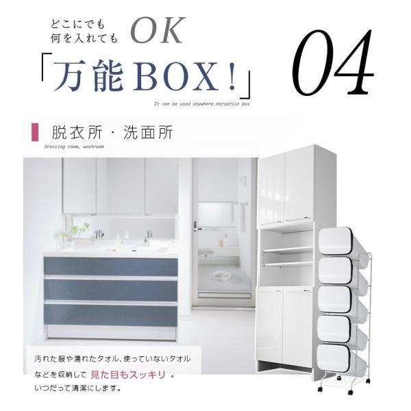 ゴミ箱  分別 キッチン おしゃれ フタ付き 屋外 ダストボックス アピオス 5段  送料無料|2e-unit|05