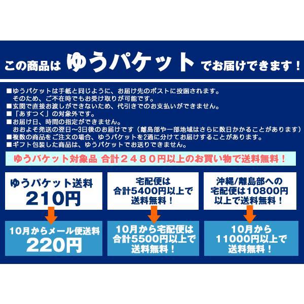 CHUMS チャムス Key Pouch キーポーチ|2m50cm|08