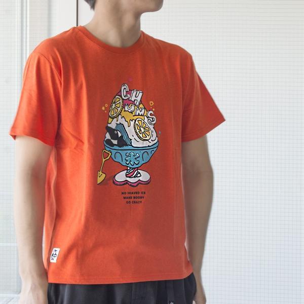 Tシャツ CHUMS Shaved Ice T-Shirt チャムス シェイブドアイス|2m50cm|04