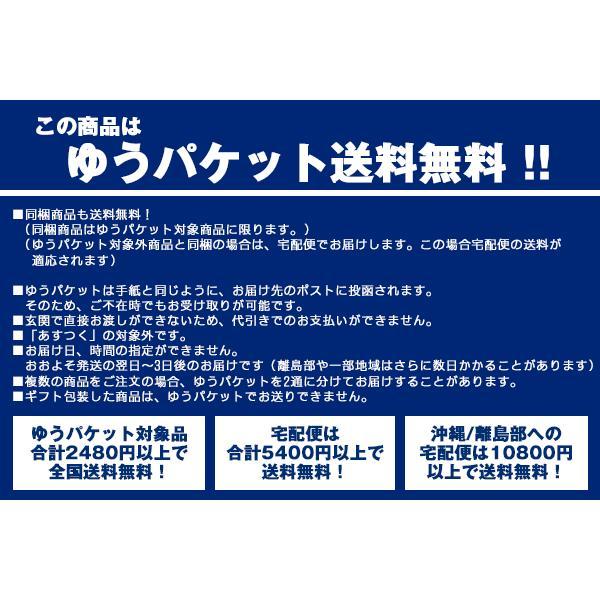 ショルダーバッグ CHROME クローム  HIP SLING ヒップスリング|2m50cm|06