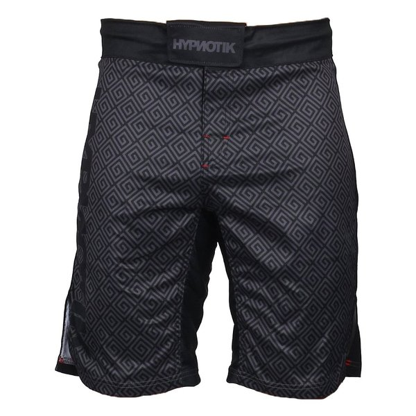 HYPNOTIK ファイトショーツ EDO FIGHT SHORTS|2m50cm|07