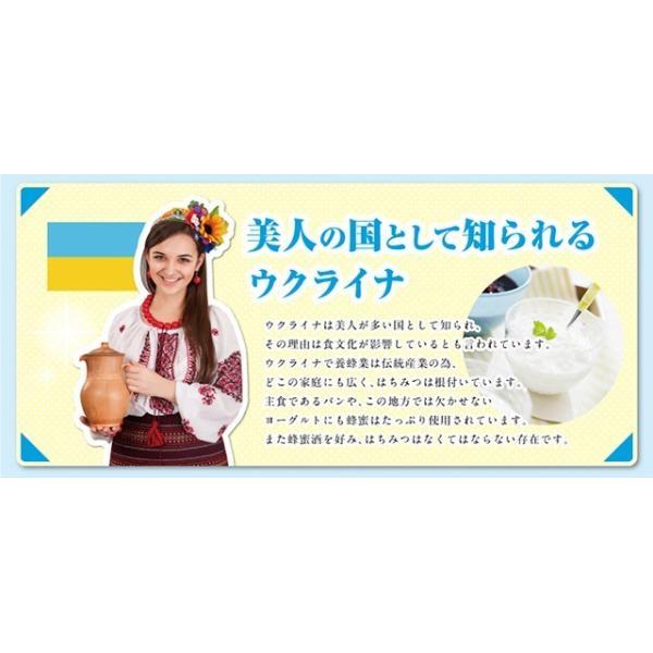 はちみつ 熊手の蜂蜜 ウクライナ産はちみつ 2.0kg|38kumate|05