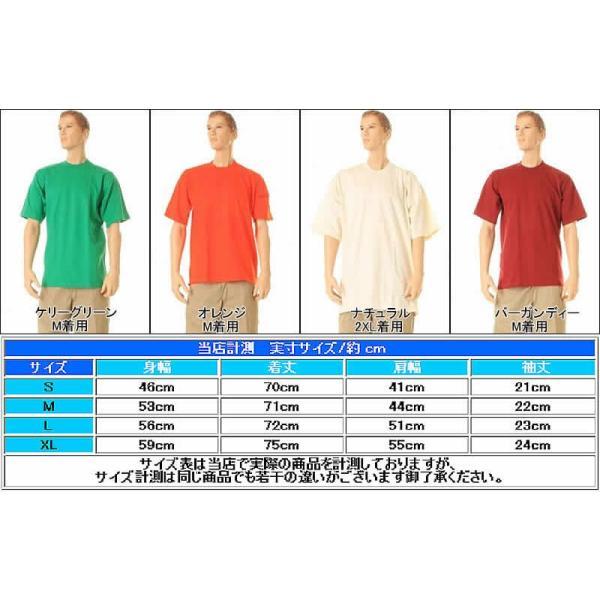 PRO CLUB #101 TEE SHIRTS 無地Tシャツ 半袖 プロ クラブ ヘビーウェイト クルーネック 半袖Tシャツ20色 3love 05