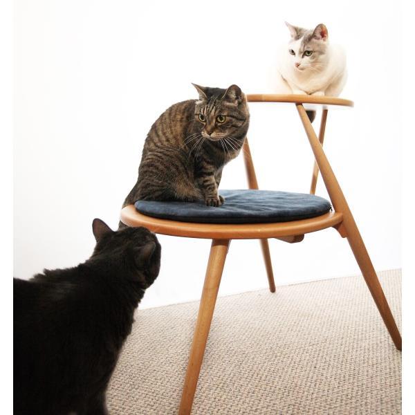 キャットタワー おしゃれ 木製ベッド ペット用品 洗えるクッション 北欧デザイン 猫用家具 egg|3queue|05