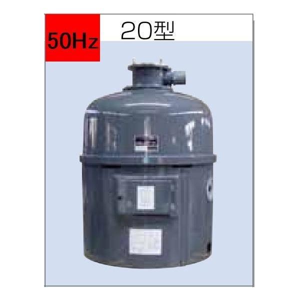  石垣メンテナンス 湧清水 97-20型(IW-20-2型) 50Hz 代引不可 ※ 個人宅への発送…
