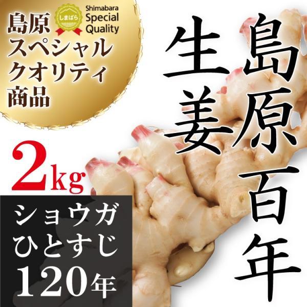 長崎県産 新しょうが 2kg 令和3年産【 新生姜 ショウガ 】【 送料無料 】