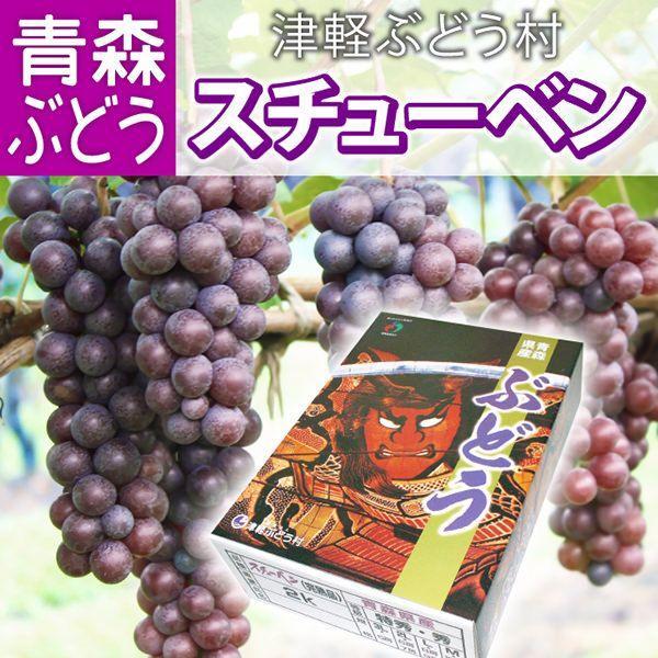 【送料無料】スチューベン 特秀2L&Lサイズ混合 約2kg(約6〜9房入) ブドウ ぶどう フルーツ デザート 贈り物 プレゼント ギフト お見舞い 産地直送
